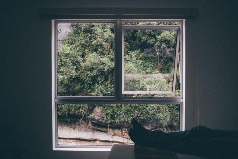 window repair brisbane